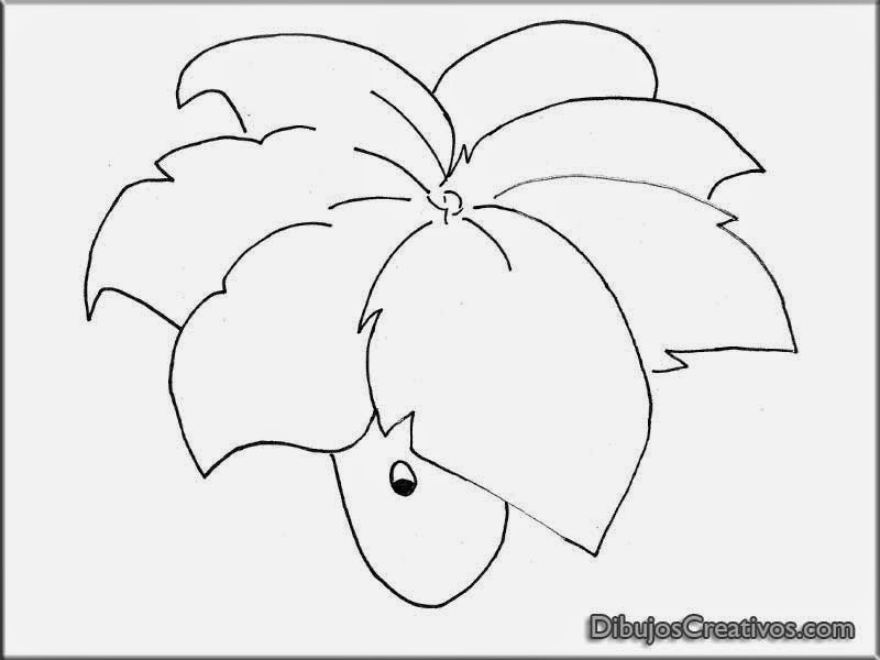 Dibujar dibujos de plantas vs zombies para clorear for Plantas para dibujar