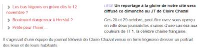 http://www.dhnet.be/regions/liege/liege-vedette-du-journal-de-tf1-dimanche-527b198235703e420f40e168