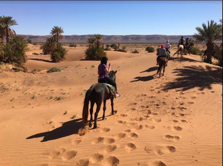 Nomadic Sahara Horse Trek Adventure