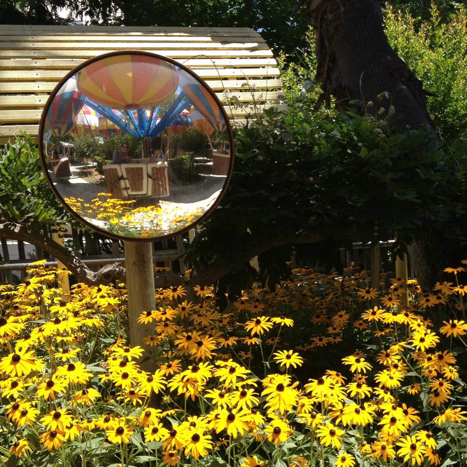 olds ninety-eight: Gilroy Gardens