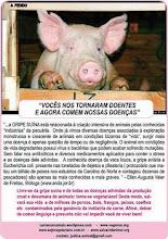 Gripe suína e alimentação