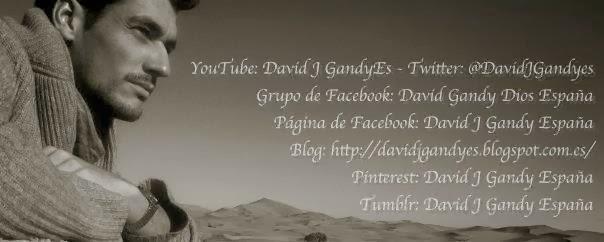 David J Gandy