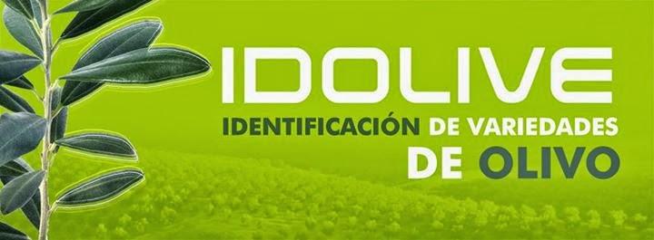 www.idolive.es