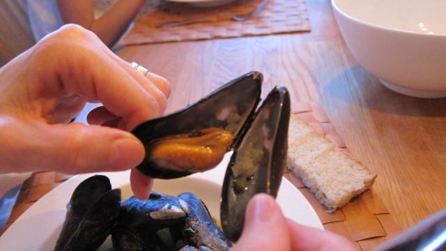 vad äter musslor