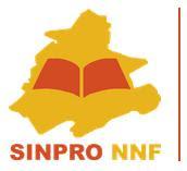 SINPRO-NNF