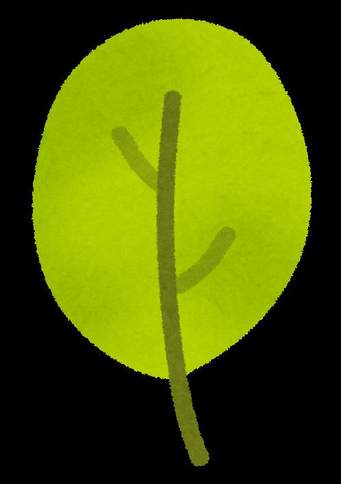 ochiba4.png (498×706)