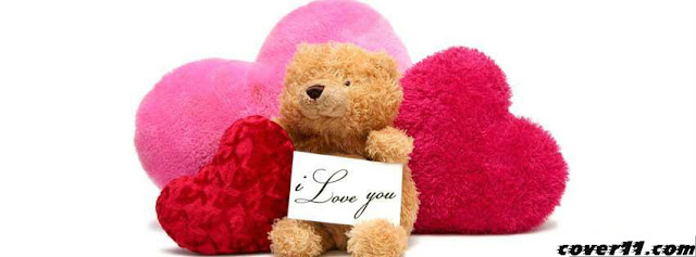 Happy Teddy Day 2013 Facebook Cover Photo