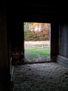 Fall colors through the open barn door
