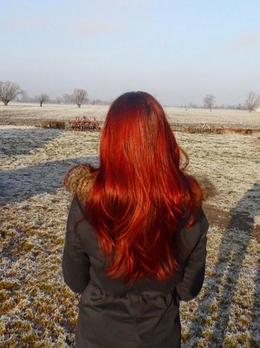 Niedziela dla włosów 20 | kremowanie + Kallos Algae
