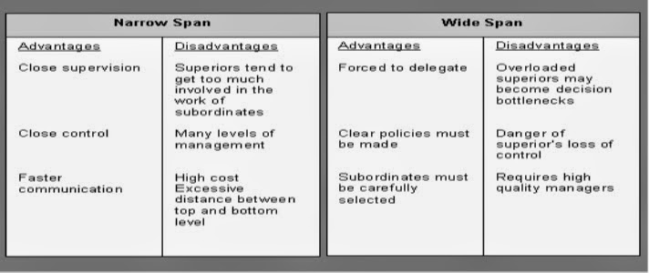 advantages and disadvantages of mcclellands theory of needs