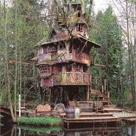 こんなツリーハウスも
