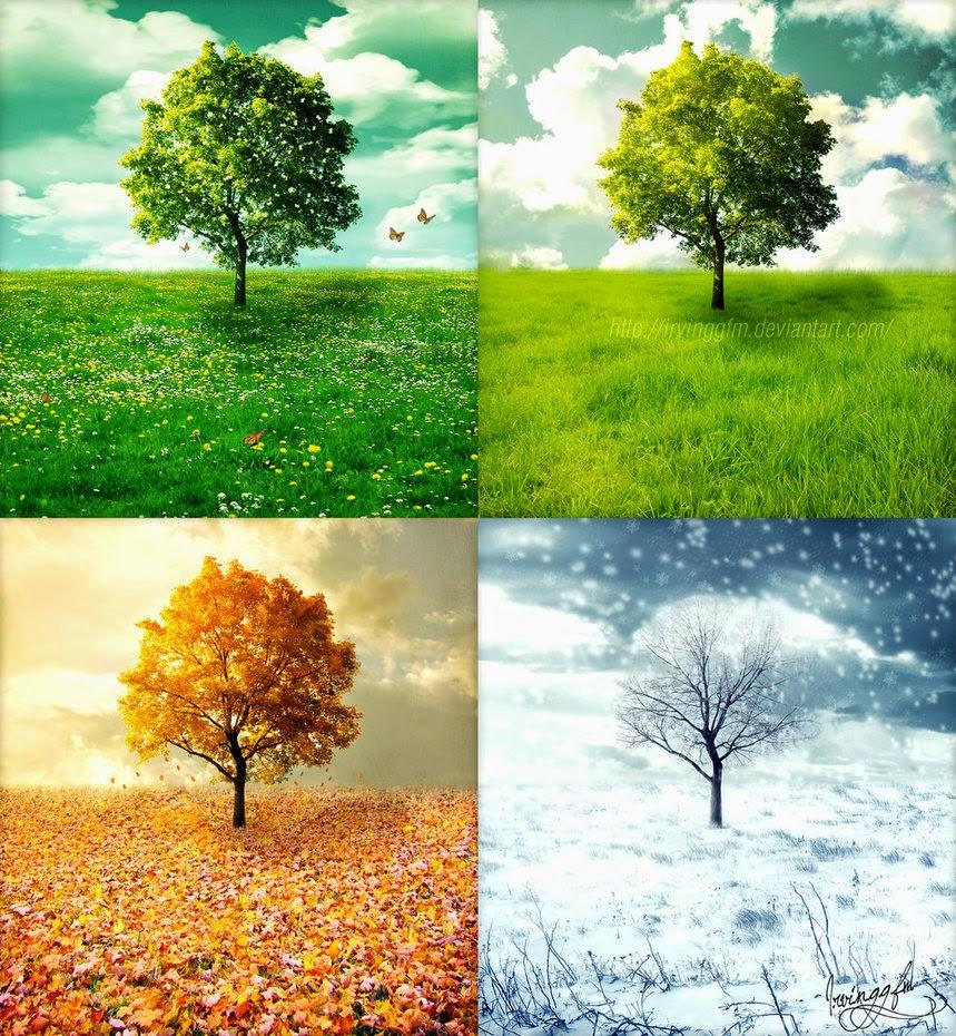 Winter Spring Summer Or Fall