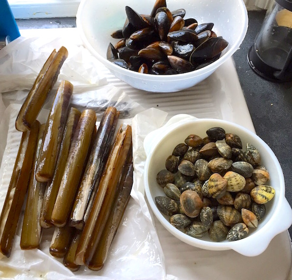 Razorclams and mussels