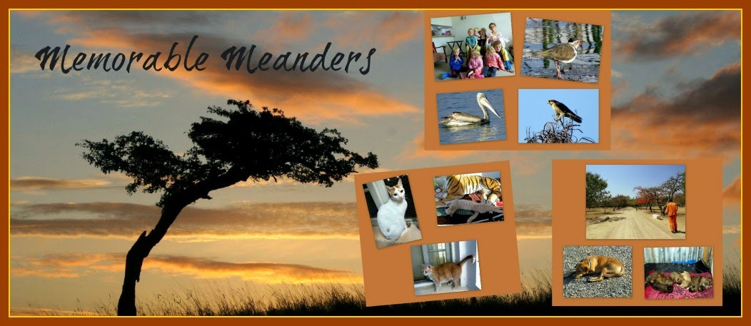 memorable meanders