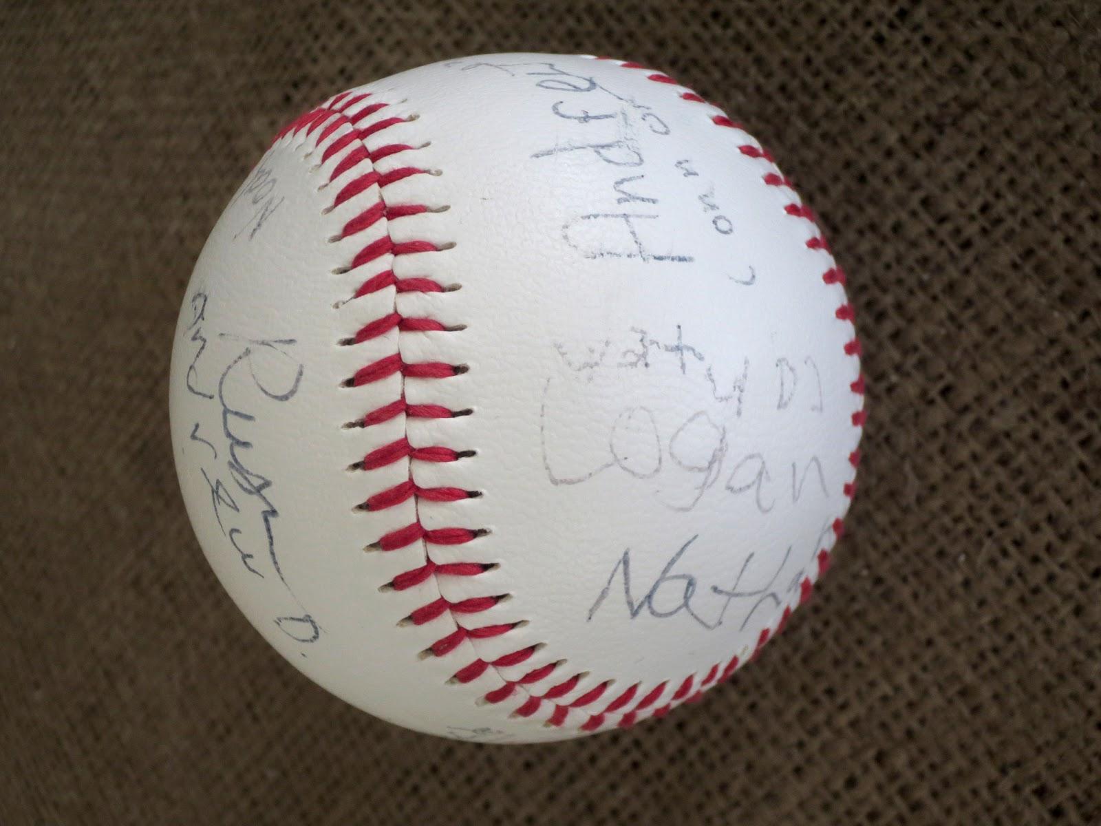 notable nest baseball birthday party