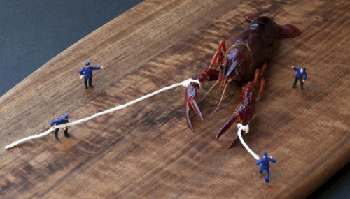 01-Christopher-Boffoli-Bio-Miniatures-with-Food-Lobster