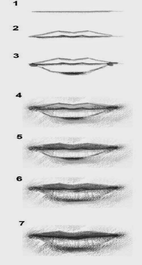 how to draw mouth step by step - Learn To Draw And Paint