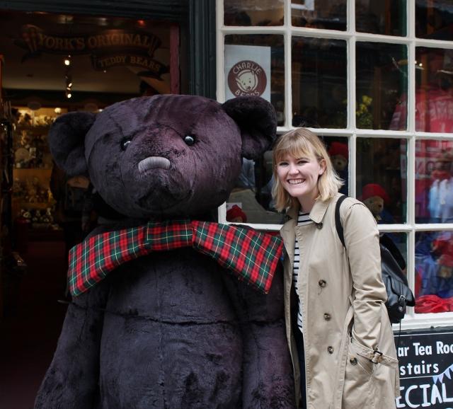 York giant bear