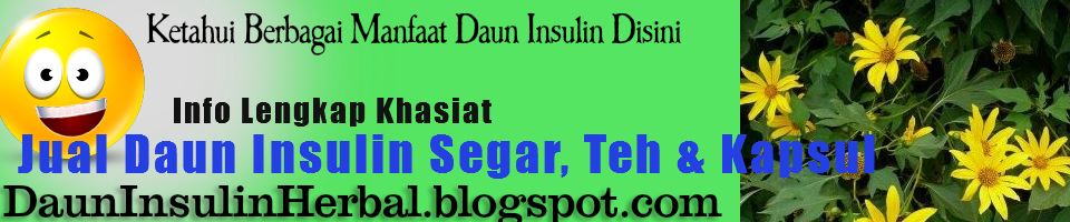 Manfaat Daun Insulin Untuk Kesehatan Anda | Dapatkan Daun Insulin Disini
