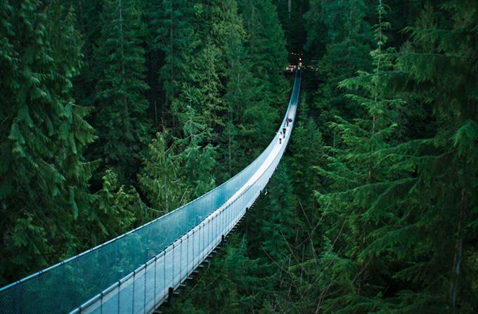 http://1.bp.blogspot.com/-T1f6JVxqOEo/ULu8X-d6UVI/AAAAAAAAMTw/P132qubY09k/s1600/bridge2.jpg