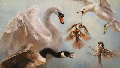 Mute swan busking, Canada Goose, House Sparrows fighting, Ring-billed Gull, oil painting Shannon Reynolds