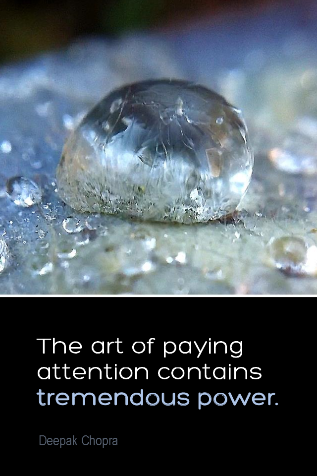 visual quote - image quotation for AWARENESS - The act of paying attention contains tremendous power. - Deepak Chopra