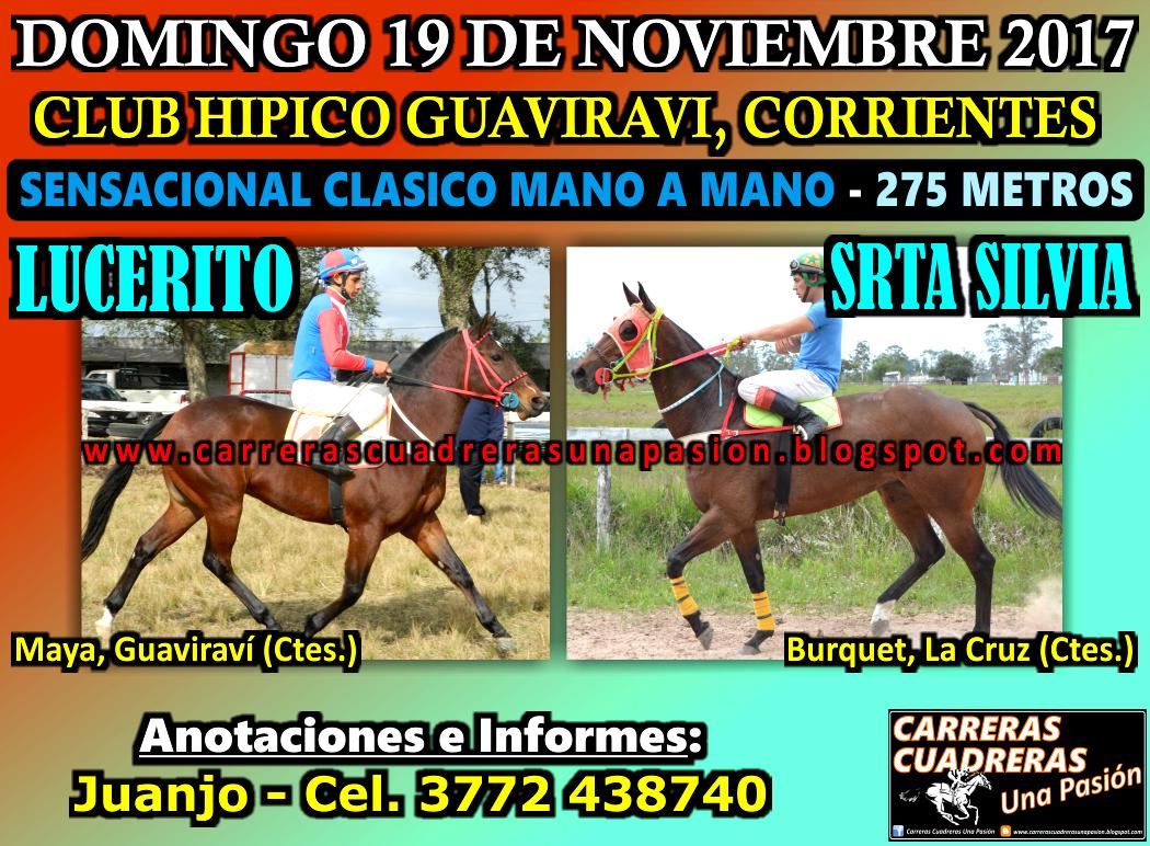 GUAVIRAVI - CLASICO 275