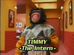Timmy the Intern