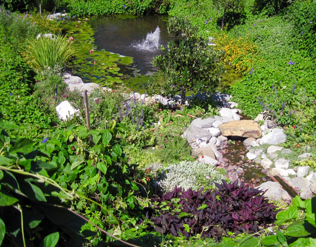 Full Time Rv Travels Of Jackie And Randy Myrtle Creek Botanical Gardens And Nursery