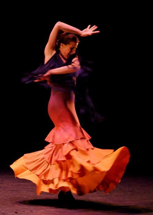 flamenco fury explores...