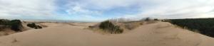 Panorámica de los médanos de la reserva de Cariló