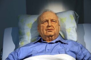 Ariel Sharon admitted hospital