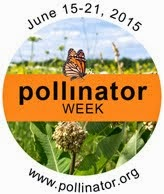 National Pollinator Week 2015