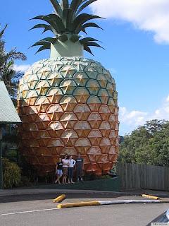 piña gigante