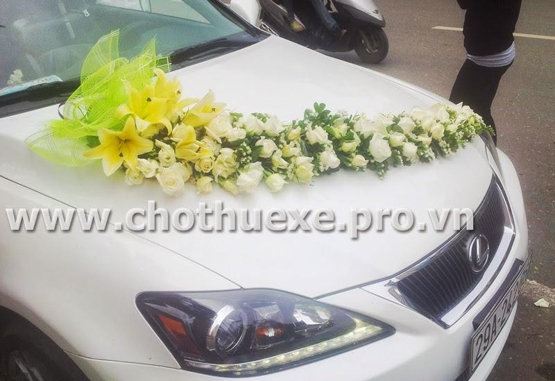 Cho thuê xe cưới mui trần Lexus IS250C trắng 1
