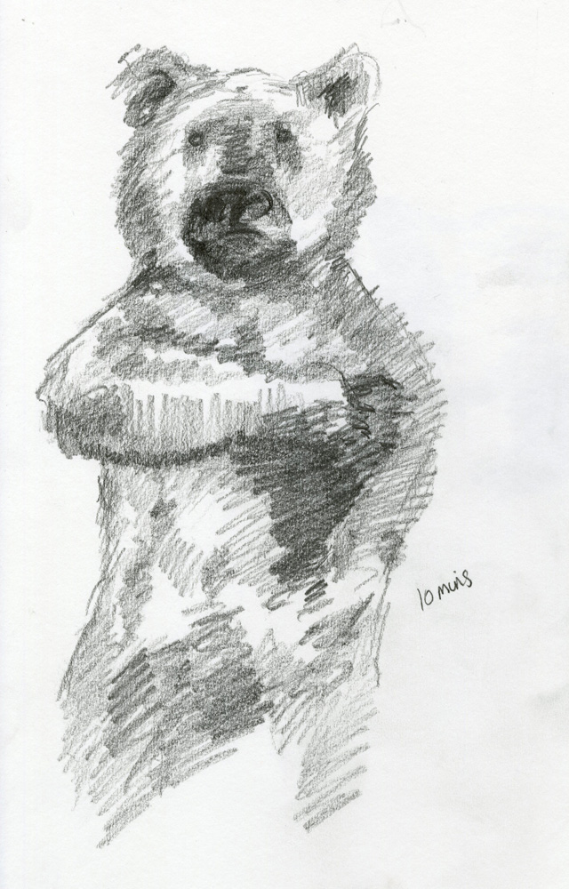 Emma Bates - Observational Drawing 2: Figure Drawing - Non-human Anatomy