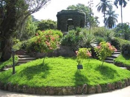 pedras jardim botanico:Para estimular o olfato, pode-se optar por plantas que tem no aroma