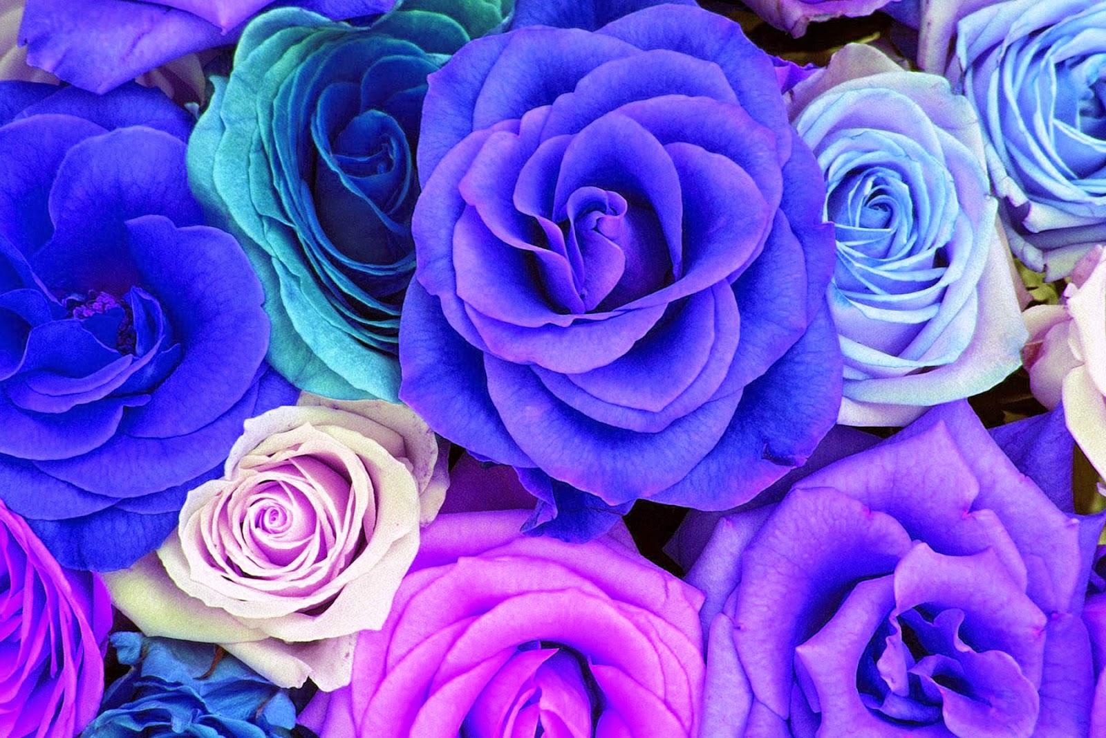 How to Paint Water Drop Birgit OConnor Watercolor Flowers