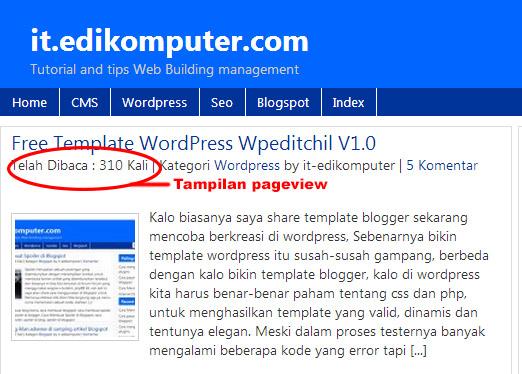 Cara membuat Pageview di setiap artikel di wordpress tanpa plugin