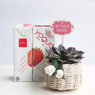 Manfaat Minum Yoghurt Heavenly Blush Untuk Kesehatan