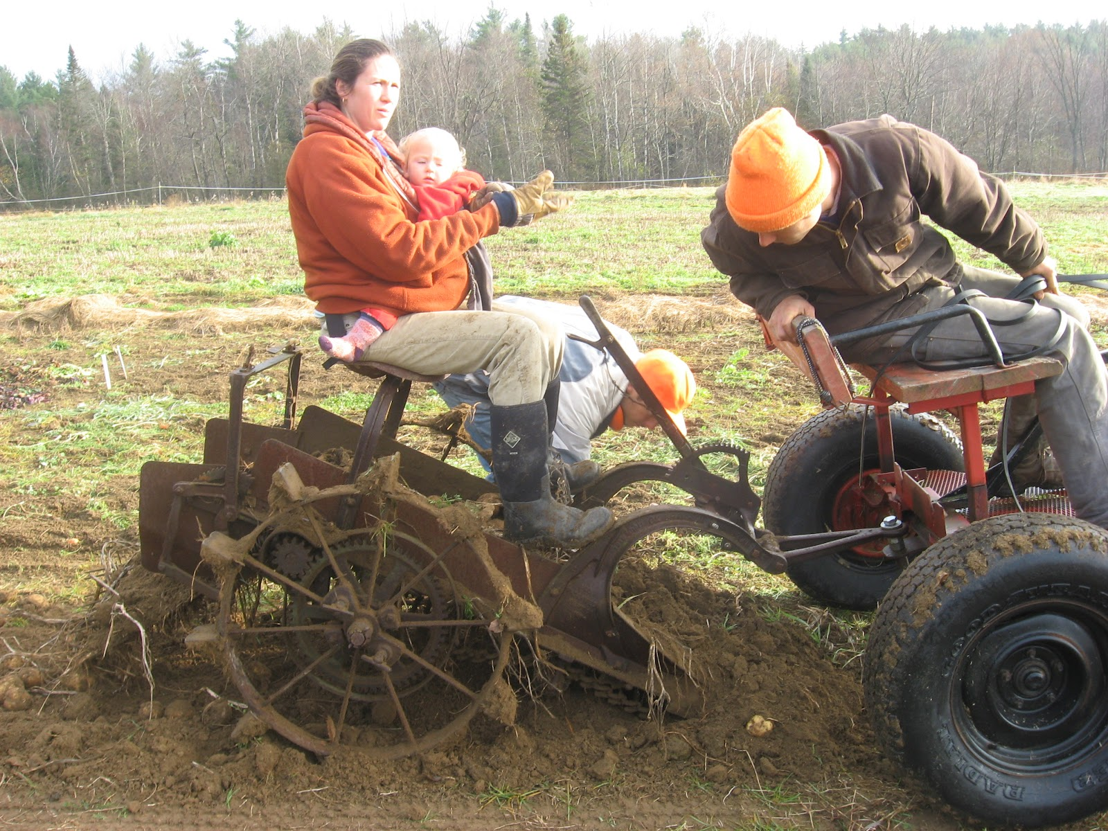 Woodmizer encore | North Branch Farm