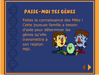 http://jeux.ameriquebec.net/jeu/passe-moi-tes-genes