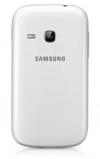 Samsung Galaxy Young S6310 (2)