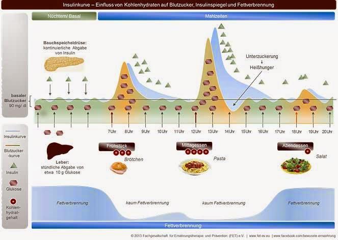 verstoffwechselung von kohlenhydraten