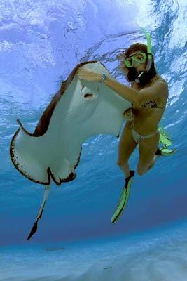 Vacation, Travel Tips, Travel Ideas, Vacation Ideas, Beach, Parasailing, Windsurfing, Stingray City Grand Cayman