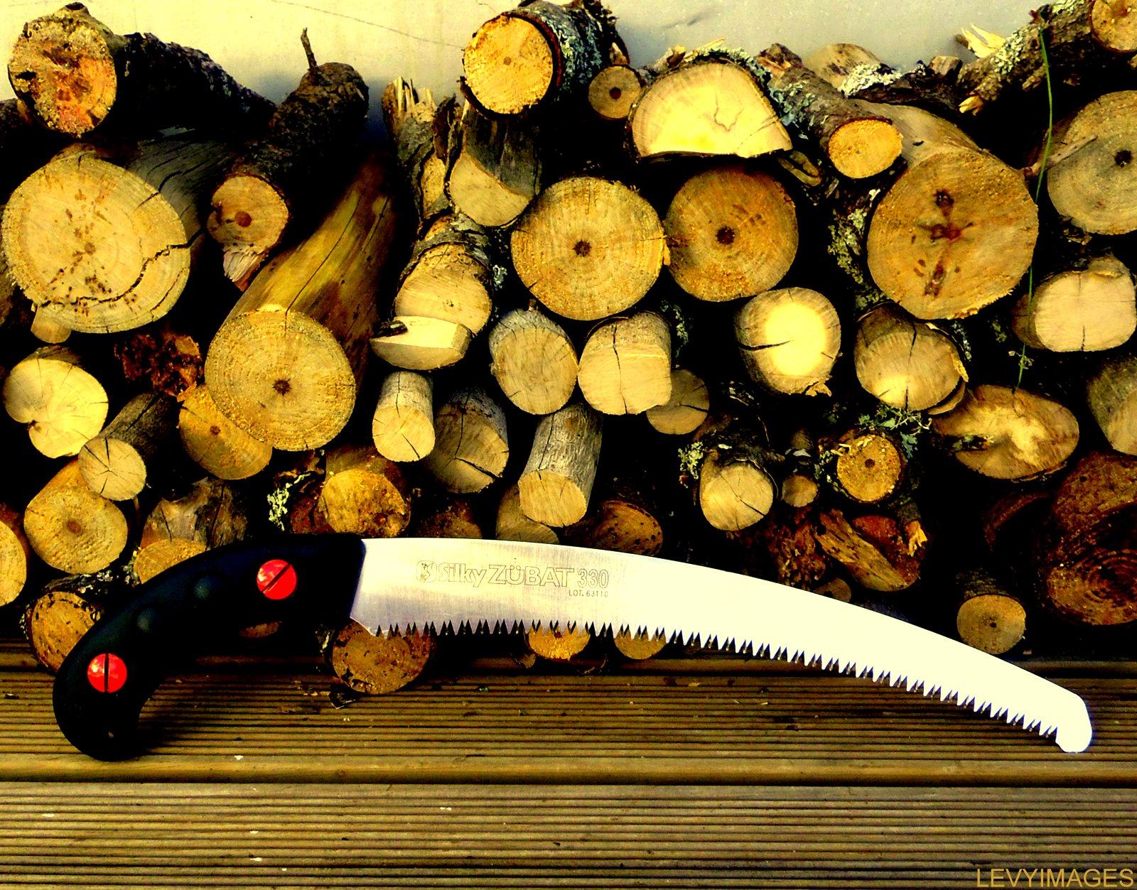http://1.bp.blogspot.com/-T5Mvha9Cxb8/T6bgQ-zZI1I/AAAAAAAAEV4/w--mH0mzNPI/s1600/silky-zubat-pruning-saw-the-flying-tortoise-004.jpg