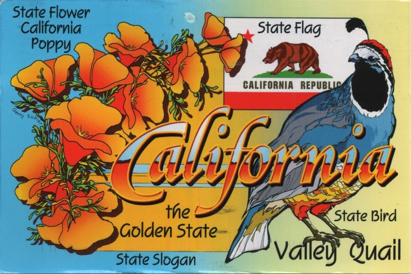 Modern map of California showing bird, flag and flower