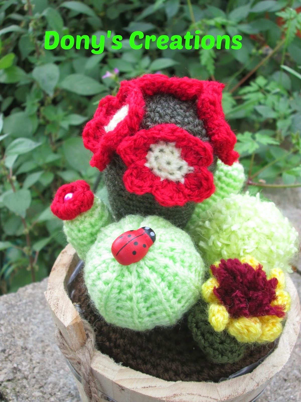 Dony 39 s creations handmade composizione pianta grasse - Composizione piante grasse da interno ...