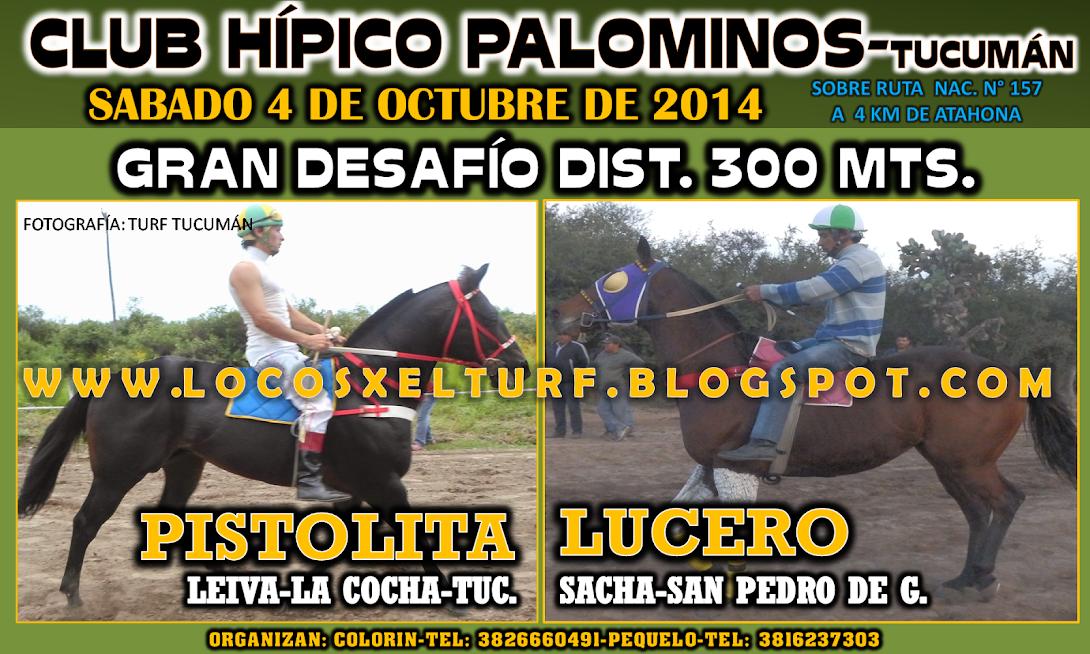 04-10-14-DESAFIO2-HIP. PALOMINOS