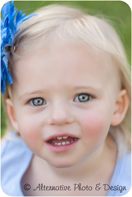 Makayla 2 Year Pictures | Children Photographer Janesville, WI